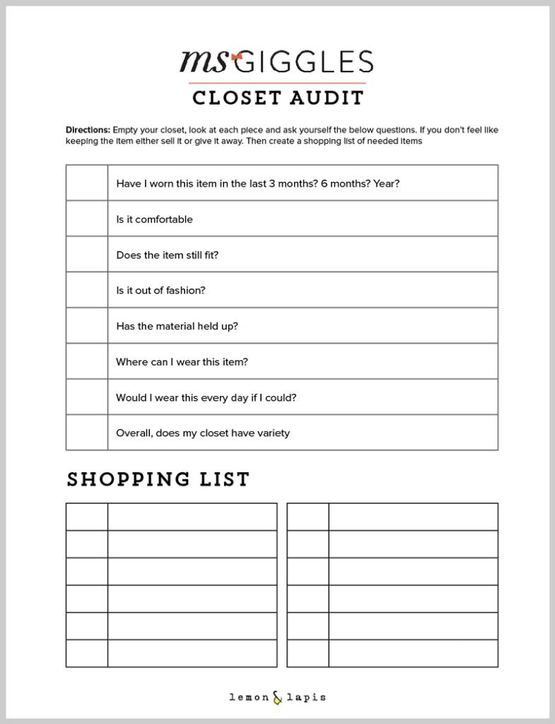 closet-audit-preview